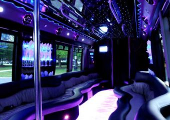 22 people party bus Plano
