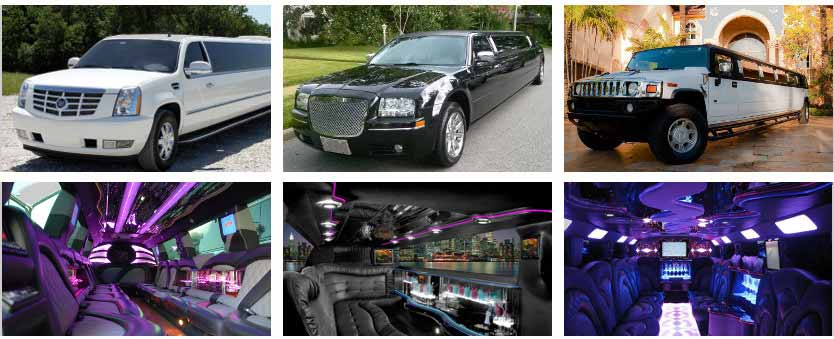 airport transportation party bus rental plano